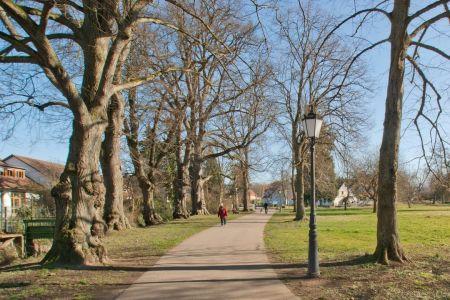 Park am Mühlbach